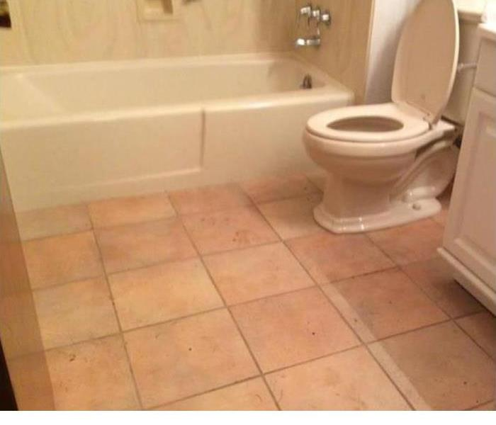 Water Damage The Cause Behind Your Leaking Toilet and How To Fix It