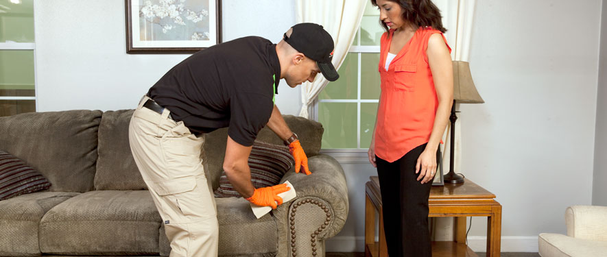 Memphis, TN carpet upholstery cleaning